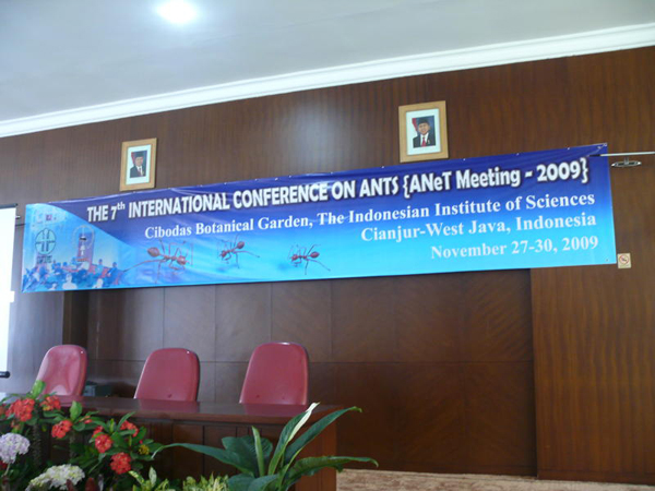 ANeT meeting 2009