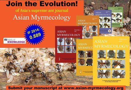 Asian Myrmecology Vol.6 coming soon