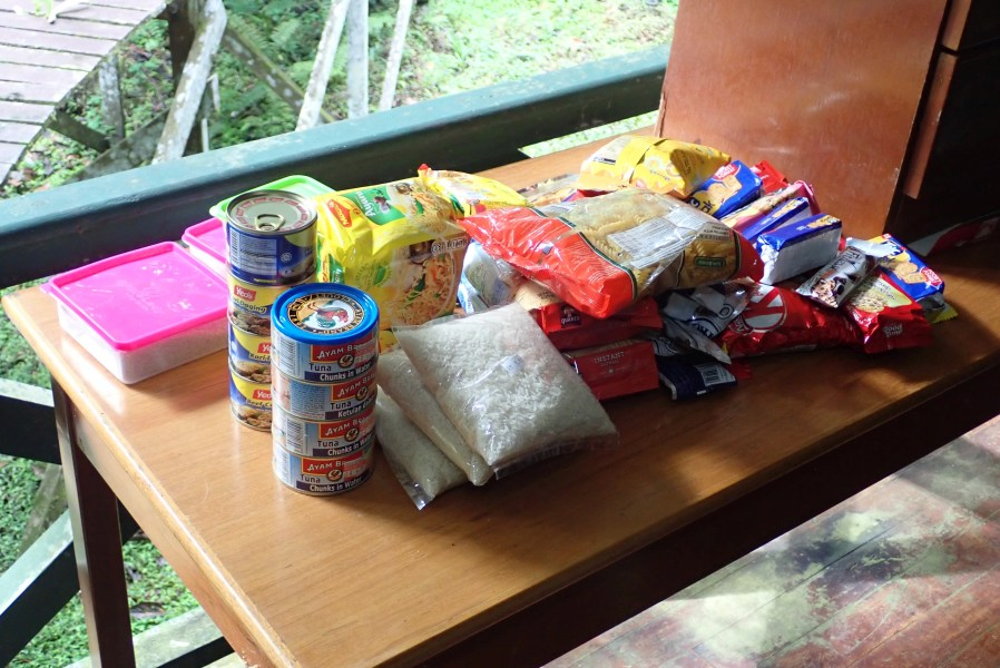 Expedition to collect ants at the Mount Mulu: Part 1